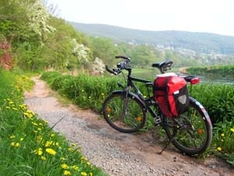 Mountainbiking als Natursport